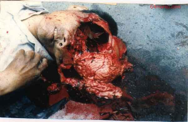 【見せしめ】死刑、拷問の歴史 第五獄舎【残酷】YouTube動画>56本 dailymotion>1本 ->画像>268枚